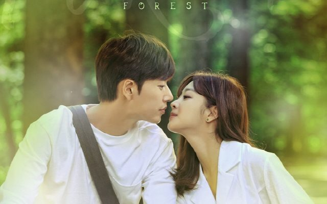 forest kdrama